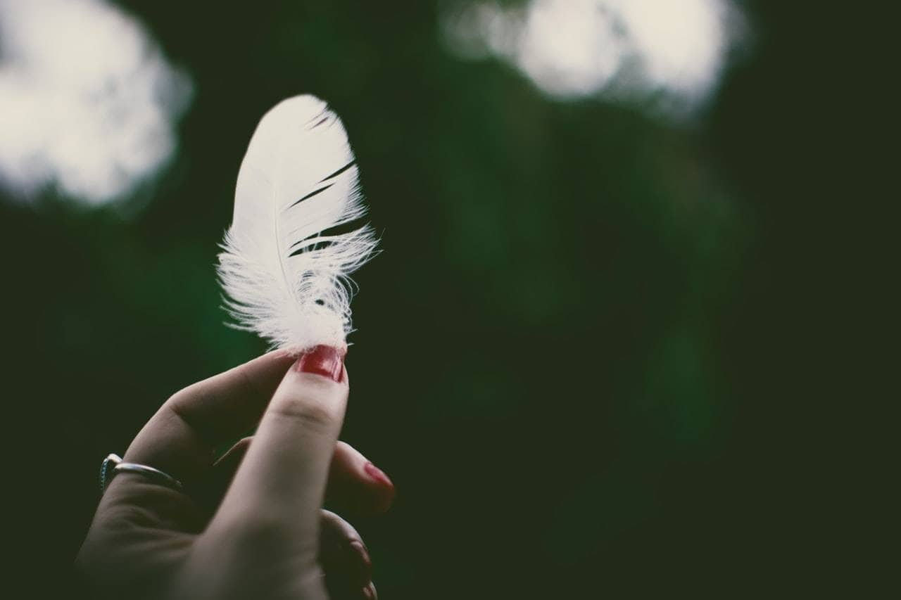 White Feather Signs From The Universe